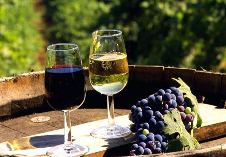 Вино фестиваль Милан