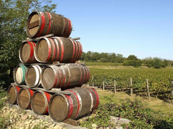 Franciacorta дегустации вина
