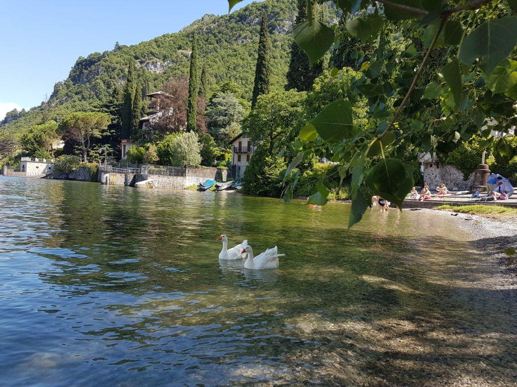 Lierna Riva Bianca Italia